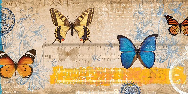 butterfly-834843_1280
